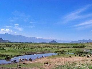 African_landscape