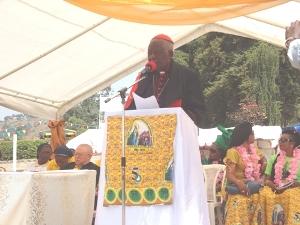 Christian Cardinal Tumi delivering an academic discourse