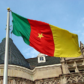 Drapeau_Cameroun270109275