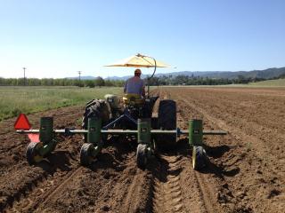 Cool farming1