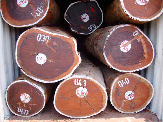 Saw-logs--Tropical-Hardwood